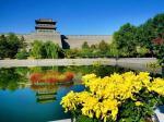 大同城墙带状公园第二届菊花展  吸引了众多市民前往观赏
