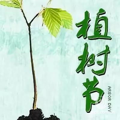 植树节,种下绿色,种下希望,从我们开始