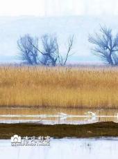 """桑干河流域是""""人类祖先的东方故乡"""""""